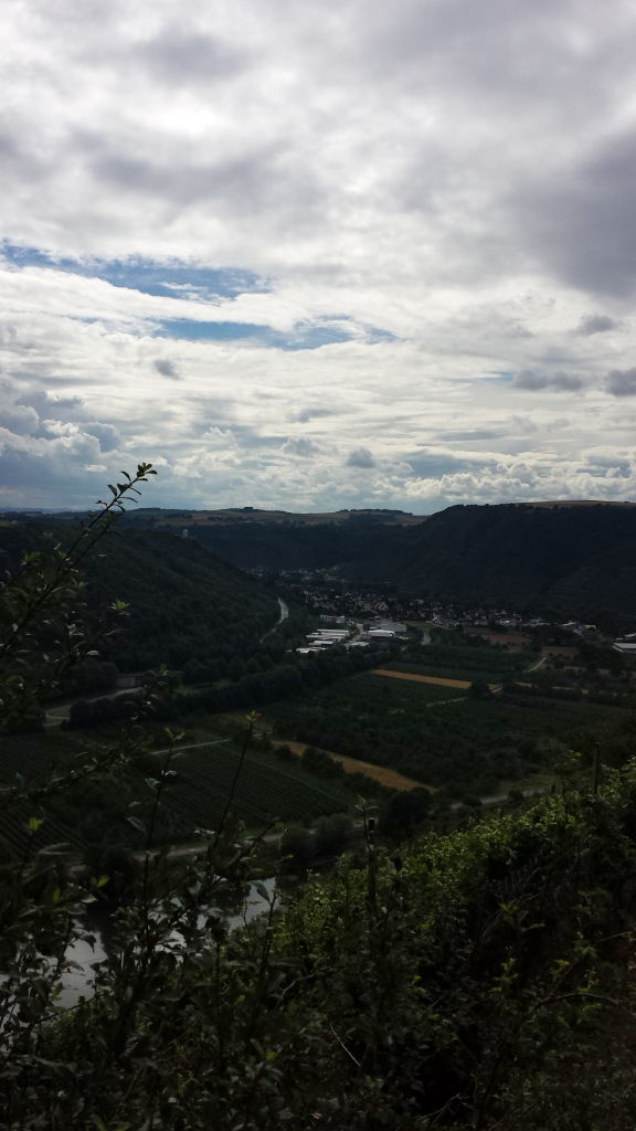 The majestic Mosel